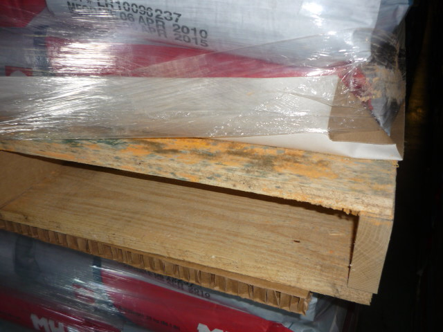 wood pallet with mold