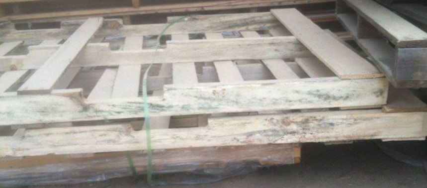 Wood Pallet Mold
